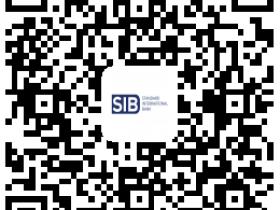 免费开户美国银行卡——标准国际银行(Standard International Bank)