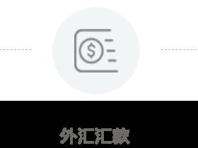 老虎证券入金流程指南